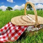 Dags för picknick