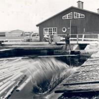 Besök Nostalgia – Historien om Sveriges äldsta Trähusfabrik i Fågelfors