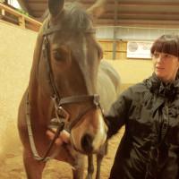 Högsby Hästsportklubb