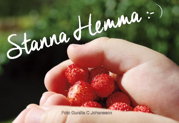 Stanna Hemma :- )